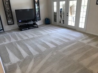 Carpet Cleaning service in orlando steam