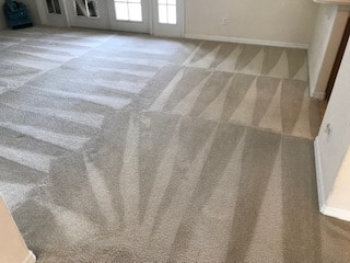 Carpet Cleaning Service in Orlando Florida price